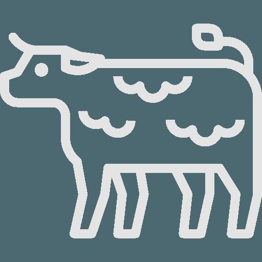 Boucherie du Pont de l'Arc | Le bœuf Génisses de moins de 3 ans, de la race Simmental de Bavière.