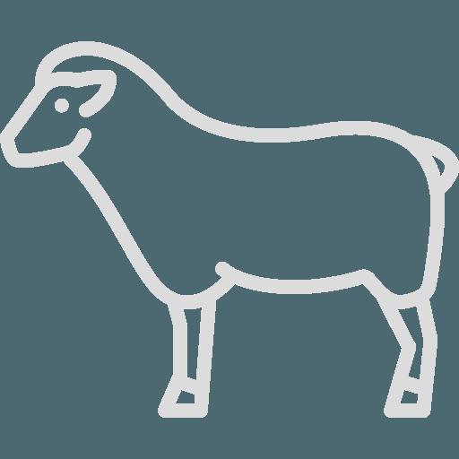 Boucherie du Pont de l'Arc L'agneau Agneau de Sisteron, porteur du Label Rouge et de l'IGP.