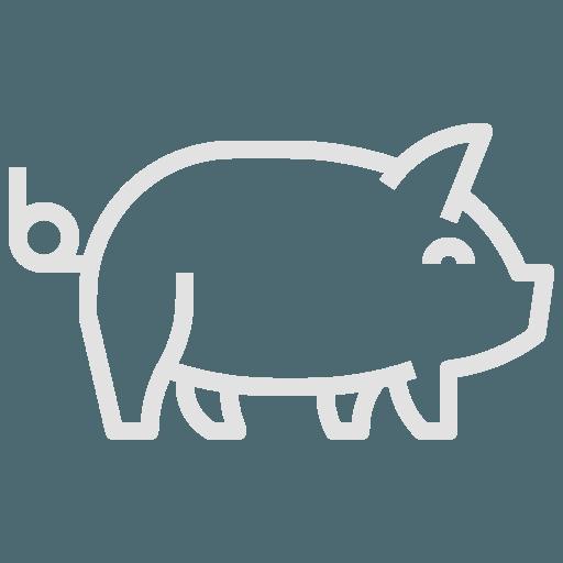 Boucherie du Pont de l'Arc | Le porc Porc fermier local des environs d'Aix-en-Provence, élevé dans beaucoup d'espace.